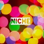 Choosing-A-Niche